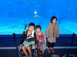 1月美ら海水族館19